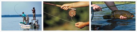 Обучение рыболовов как бизнес