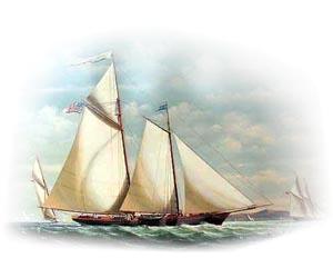 Как организовать яхт-клуб?
