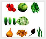 Выращивайте реальные продукты вирутально