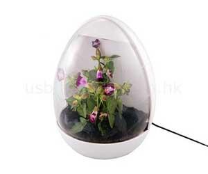 Выращивание и продажа экзотических растений