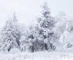 доставка снега
