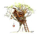 Бизнес на строительстве домиков на деревьях