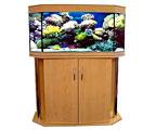 бизнес на обслуживании аквариумов