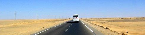 Отчеты по совместным поездкам от OliveTrips