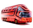 Организация необычных автобусных туров