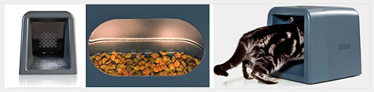 Автоматическое кормление домашних животных. Как на этом заработать?