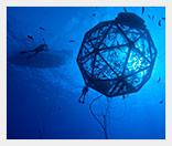 Морские подводные фермы