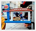 Кафе для птиц от Burger King