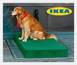 Парковки для собак от ИКЕА