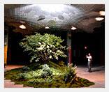 Подземный парк в Нью-Йорке