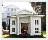 Бизнес на собачьих домиках