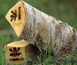 Эксклюзивные дрова для каминов